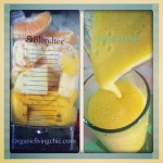 Blendtec Yellow Sunny Smoothie