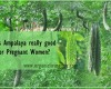 Is Ampalaya really good for Pregnant Women?