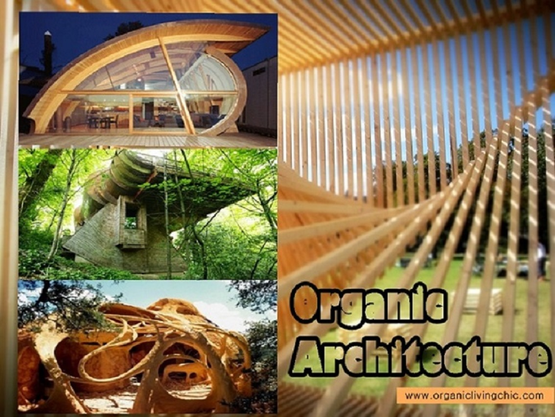 28 Gallery For Gt Organic Architecture Gallery 171