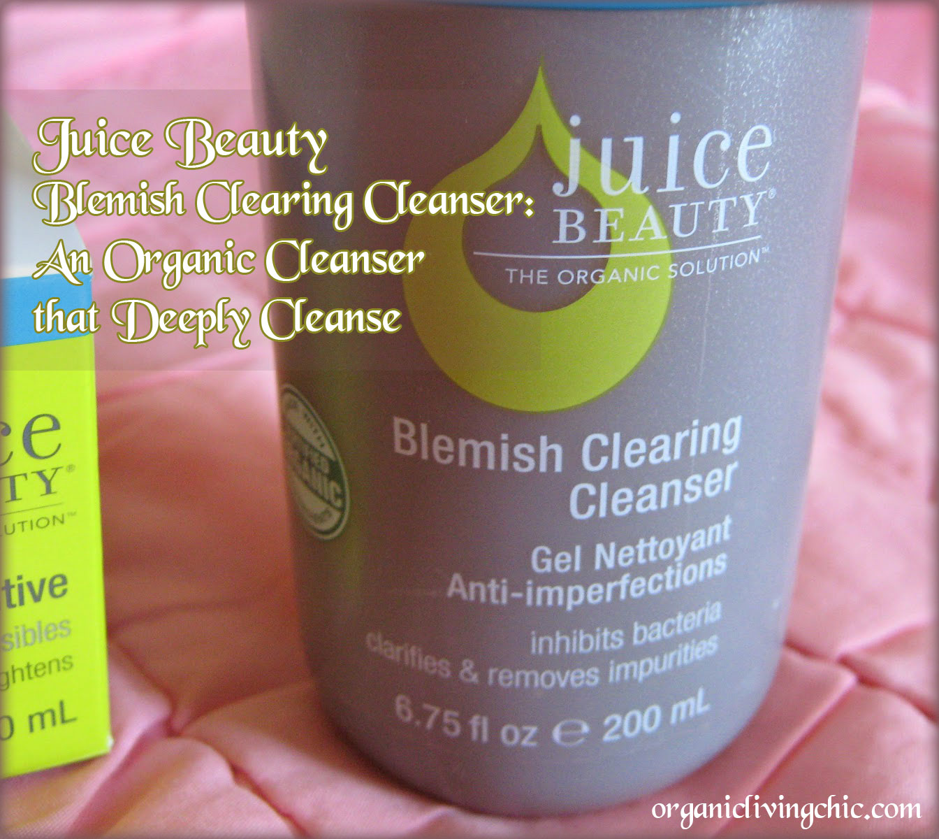juicebeauty, juice beauty, juice beauty reviews, juice beauty blemish clearing cleanser, organic beauty products, blemish skin, organic beauty, juice beauty cleanser, juice beauty blemish clearing cleanser review, clearskin blemish clearing