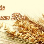 Why Organic Brown Rice is Healthier than Any Rice