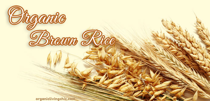 fact organic brown rice is healthier than any rice! find out why, organic brown rice, brown rice, organic rice, why organic brown rice is healthier, benefits of organic brown rice, organic living, facts about organic, facts about organic brown rice, organic food