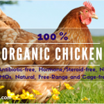 Organic Chicken and Egg: Why They're the Healthy Sources of Protein