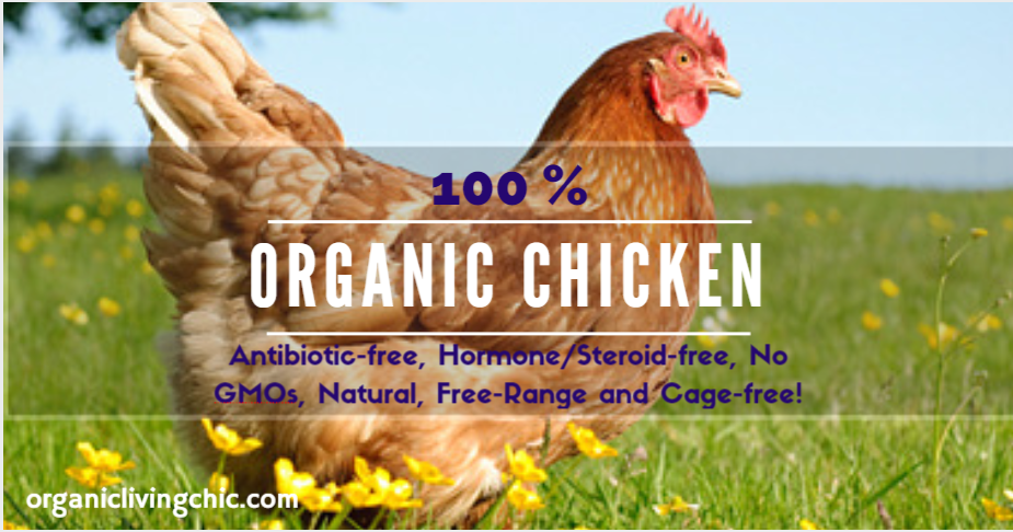organic eggs, organic chicken eggs, chicken eggs, organic chicken, free range chicken, organic living