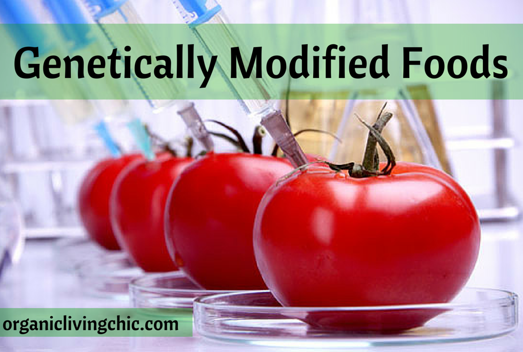 List of Genetically Modified Foods You Should Start Avoiding Now!, genetically modified foods, organic living chic, gmo, organic foods