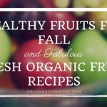 Healthy Fruits for Fall and Fabulous Fresh Organic Fruit Recipes