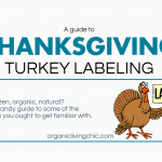A Guide to Thanksgiving Turkey Labeling